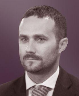 Guglielmo Troiano, Avvocato e analista di sistemi informativi