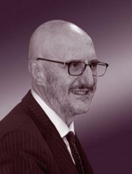 Francesco Caio, Commissario per l'Attuazione dell'Agenda Digitale
